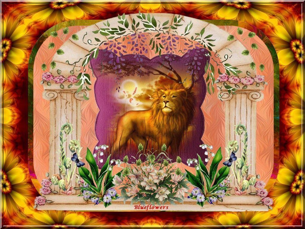 Fonds ecran animaux - Animaux du roi lion ...